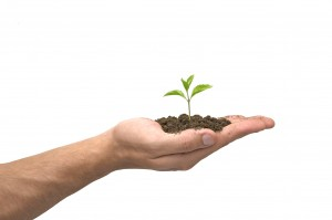 Plant on hand 300x199 How to be more motivated